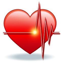 心臓がバクバクと速くなる | 心臓病の知識 | 公益財 …